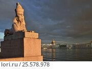 Купить «Египетский сфинкс на набережной Невы. Санкт-Петербург», эксклюзивное фото № 25578978, снято 30 октября 2015 г. (c) Александр Алексеев / Фотобанк Лори