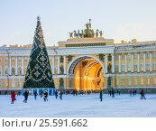 Купить «Новогодняя ель на Дворцовой площади. Санкт-Петербург», фото № 25591662, снято 5 января 2017 г. (c) Алексей Ларионов / Фотобанк Лори
