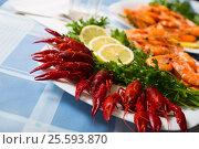 Купить «Delicious Mediterranean seafood shrimps and crawfish close up», фото № 25593870, снято 24 февраля 2020 г. (c) Яков Филимонов / Фотобанк Лори