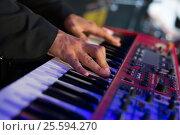 Музыкант. Стоковое фото, фотограф Elena Kucherenko / Фотобанк Лори
