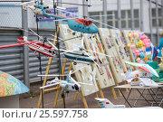 Купить «Модели вертолетов», фото № 25597758, снято 9 июня 2013 г. (c) Владимир Ковальчук / Фотобанк Лори
