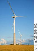 Купить «Два ветряных  электрогенератора на поле летним вечером. Эстония», фото № 25599102, снято 1 августа 2015 г. (c) Виктор Карасев / Фотобанк Лори