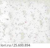 Купить «Красочный фон текстура», иллюстрация № 25600894 (c) Сергей Тихонов / Фотобанк Лори
