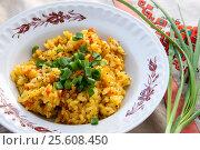 Купить «Plate of pilaf with green onions for lunch», фото № 25608450, снято 24 февраля 2017 г. (c) Катерина Белякина / Фотобанк Лори