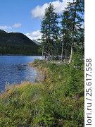 Купить «Берег горного озера. Восточная Якутия», фото № 25617558, снято 7 августа 2013 г. (c) Сергей Дрозд / Фотобанк Лори