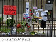 Купить «Цветы у посольства Кубы в Буэнос-Айресе в день траура в связи со смертью Фиделя Кастро», фото № 25619262, снято 26 ноября 2016 г. (c) AK Imaging / Фотобанк Лори