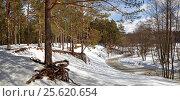 Панорама лесной реки зимой. Стоковое фото, фотограф Сергей Панкин / Фотобанк Лори