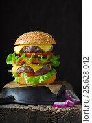 Бургер с двойной котлетой на темном фоне. Стоковое фото, фотограф Julia Ovchinnikova / Фотобанк Лори