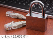 Купить «Protection of personal data. Data Encryption.», фото № 25633014, снято 28 февраля 2017 г. (c) Александр Якимов / Фотобанк Лори