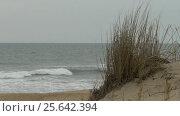 Sand dune on Atlantic ocean coast in storm. Стоковое видео, видеограф Igor Vorobyov / Фотобанк Лори