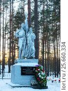 Купить «Памятник на братском захоронениии советских воинов у среднего озера Толони, погибших в 1941-1944 годах, защищая город Лугу», эксклюзивное фото № 25660334, снято 10 декабря 2016 г. (c) Александр Щепин / Фотобанк Лори