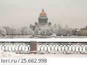 Купить «Зимний Санкт-Петербург. Река Нева», эксклюзивное фото № 25662998, снято 14 января 2010 г. (c) Александр Алексеев / Фотобанк Лори