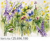 Купить «Watercolor by Waltraud Zizelmann, Wildflowers», фото № 25696190, снято 10 декабря 2006 г. (c) mauritius images / Фотобанк Лори