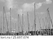 Купить «Sail masts in the port of Barcelona», фото № 25697074, снято 1 ноября 2016 г. (c) mauritius images / Фотобанк Лори