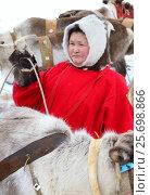 Купить «Женщина ненка в национальной одежде среди северных оленей», фото № 25698866, снято 4 марта 2017 г. (c) Григорий Писоцкий / Фотобанк Лори