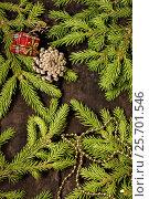 Веточки ели на старом деревянном фоне. Новогодняя композиция, фото № 25701546, снято 4 июля 2014 г. (c) Наталья Осипова / Фотобанк Лори