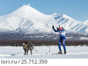Соревнования по скиджорингу на фоне вулканов, фото № 25712350, снято 10 декабря 2016 г. (c) А. А. Пирагис / Фотобанк Лори