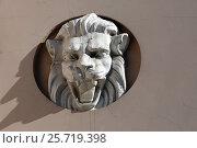 Купить «Голова льва на городской усадьбе Г.П.Юргенсона. Москва, Колпачный пер., 9 строение 1», эксклюзивное фото № 25719398, снято 10 марта 2017 г. (c) Алексей Гусев / Фотобанк Лори