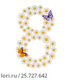 Number eight made of Flowers with two Butterfly. Стоковая иллюстрация, иллюстратор Дмитрий Самойленко / Фотобанк Лори