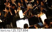 Купить «Ufa, RUSSIA - NOVEMBER 19, 2015: Symphony Orchestra at the Bashkir Theater of Opera and Ballet, Ufa», видеоролик № 25727894, снято 19 ноября 2015 г. (c) Mikhail Erguine / Фотобанк Лори