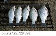 Купить «Smoke fish. Five fishes lying on the steel grille prepared for smoking. HD», видеоролик № 25728098, снято 2 марта 2017 г. (c) ActionStore / Фотобанк Лори