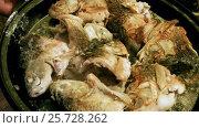 Купить «Cooking on the open fire. Pieces of freshwater fish fried in a cast-iron skillet. HD», видеоролик № 25728262, снято 27 февраля 2017 г. (c) ActionStore / Фотобанк Лори