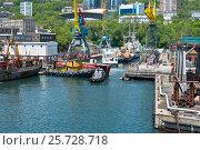 Купить «Vessels are moving into dry dock for repair», фото № 25728718, снято 3 июня 2016 г. (c) Георгий Хрущев / Фотобанк Лори