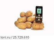 Нитрат тестер проверяет картофель (2017 год). Редакционное фото, фотограф Александр Корнейчев / Фотобанк Лори