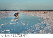 Купить «Мальчик собирает кристаллы соли в перенасыщенной солью воде. Salt Plains National Wildlife Refuge, Oklahoma, US», фото № 25729614, снято 1 июля 2012 г. (c) Ирина Кожемякина / Фотобанк Лори