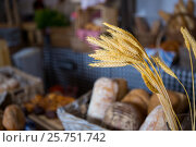 Купить «Ears of wheat at counter in bakery shop», фото № 25751742, снято 4 октября 2016 г. (c) Wavebreak Media / Фотобанк Лори