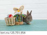 Купить «Easter eggs on wicker basket with Easter bunny and toy», фото № 25751954, снято 10 января 2017 г. (c) Wavebreak Media / Фотобанк Лори