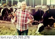 Купить «Mature worker with pitchfork in farmyard», фото № 25765278, снято 18 января 2019 г. (c) Яков Филимонов / Фотобанк Лори