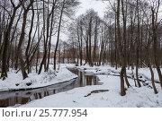 Купить «Зимние берега реки», фото № 25777954, снято 14 февраля 2017 г. (c) Сергей Паникратов / Фотобанк Лори