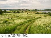 Купить «Летний пейзаж в пасмурную погоду, остров Кижи, Онежское озеро», фото № 25784962, снято 14 июня 2014 г. (c) Юлия Бабкина / Фотобанк Лори