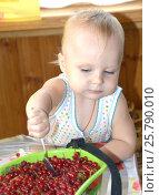 Маленький ребенок самостоятельно с удовольствием ест ложкой только что собранную с куста красную смородину. Стоковое фото, фотограф Юлия Дьякова / Фотобанк Лори