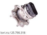 Купить «Hub and wheel bearing kit», фото № 25790318, снято 1 июня 2015 г. (c) Владимир Ковальчук / Фотобанк Лори