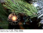 Оранжевый елочный шар на ветке. Стоковое фото, фотограф Гузель Гарипова / Фотобанк Лори