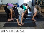 Купить «Women performing stretching exercise on exercise mat», фото № 25796702, снято 7 октября 2016 г. (c) Wavebreak Media / Фотобанк Лори