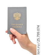 Трудовая книжка в руке. Стоковое фото, фотограф Всеволод Карулин / Фотобанк Лори