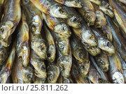 Head small dried fish. Стоковое фото, фотограф Елена Абдураманова / Фотобанк Лори