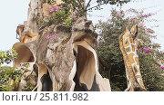 Купить «Hang Nga Guesthouse Crazy House, design Interior and Exterior landmark architecture Odd House», видеоролик № 25811982, снято 1 октября 2016 г. (c) Mikhail Davidovich / Фотобанк Лори