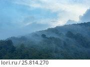 Evening mist in mountain. Стоковое фото, фотограф Юрий Брыкайло / Фотобанк Лори