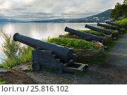 Купить «Cast iron guns at the location of the third battery Maksutova in the city of Petropavlovsk-Kamchatsky», фото № 25816102, снято 14 августа 2016 г. (c) Юлия Машкова / Фотобанк Лори