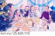 Купить «Family members saying toasts during dinner», фото № 25820110, снято 16 августа 2018 г. (c) Яков Филимонов / Фотобанк Лори