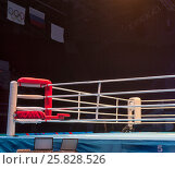 Купить «Boxing ring before the event Boxing Championship», фото № 25828526, снято 25 ноября 2016 г. (c) Maxim Tarasyugin / Фотобанк Лори