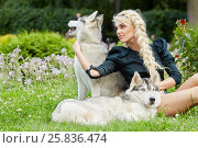 Купить «Young blond woman with two Husky dogs sits on grass in summer park», фото № 25836474, снято 23 июля 2015 г. (c) Losevsky Pavel / Фотобанк Лори