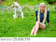 Купить «Young barefoot blond woman sits on grassy lawn in park, dog sits behind her out of focus», фото № 25836510, снято 23 июля 2015 г. (c) Losevsky Pavel / Фотобанк Лори