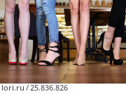 Купить «Legs in heels of four young women standing in cafe with wooden floor», фото № 25836826, снято 21 июня 2016 г. (c) Losevsky Pavel / Фотобанк Лори