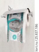 Купить «Century Dollar Roll extra large  in The Restroom», фото № 25837186, снято 24 октября 2014 г. (c) Losevsky Pavel / Фотобанк Лори