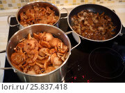 Many fresh Honey mushrooms cooked in pans in moden kitchen. Стоковое фото, фотограф Losevsky Pavel / Фотобанк Лори